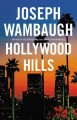 Go to record Hollywood Hills : a novel